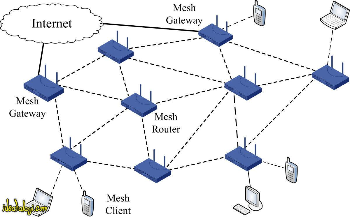 شبکه مش